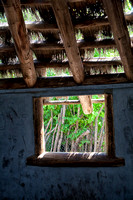 Window in a thatch hut at the Kansas City Zoo