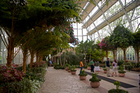Forest Park - Jewel Box